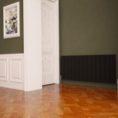 /c/a/carisa-nemo-aluminium-radiator-600x1230mm_01.jpg